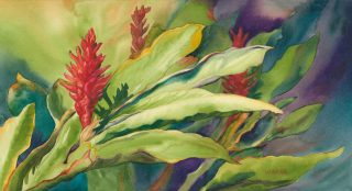 Watercolor painting of red ginger