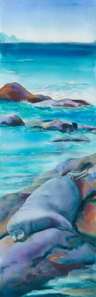 Watercolor painting of a Hawaiian monk seal resting on rocks