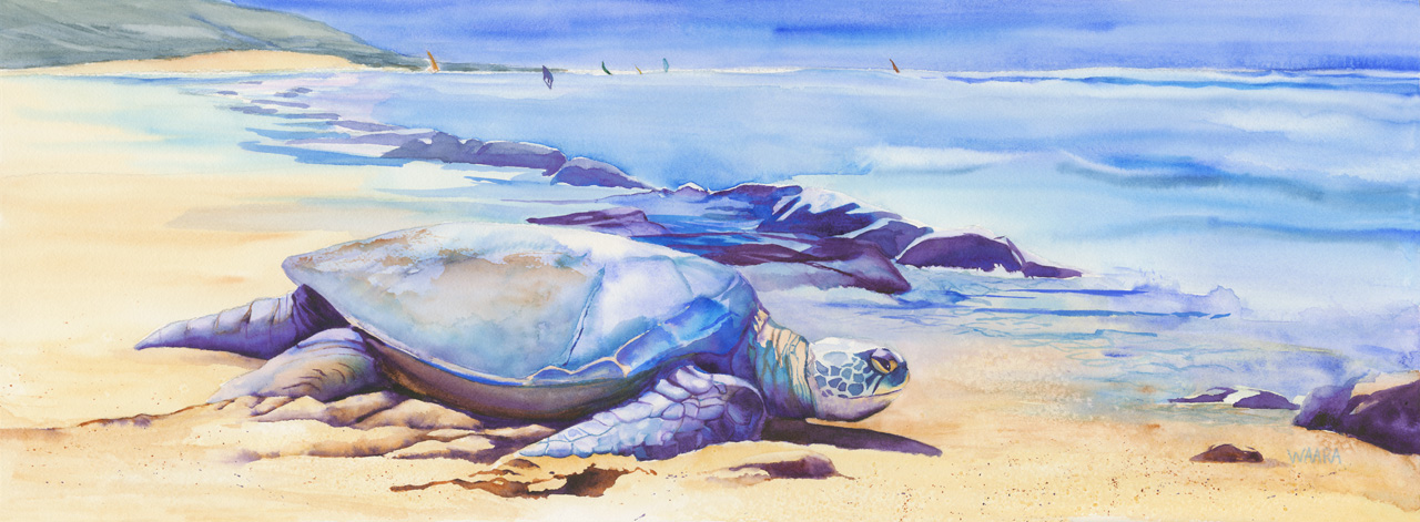 Watercolor painting of a Hawaiian sea turtle on Ho'okipa beach in Maui
