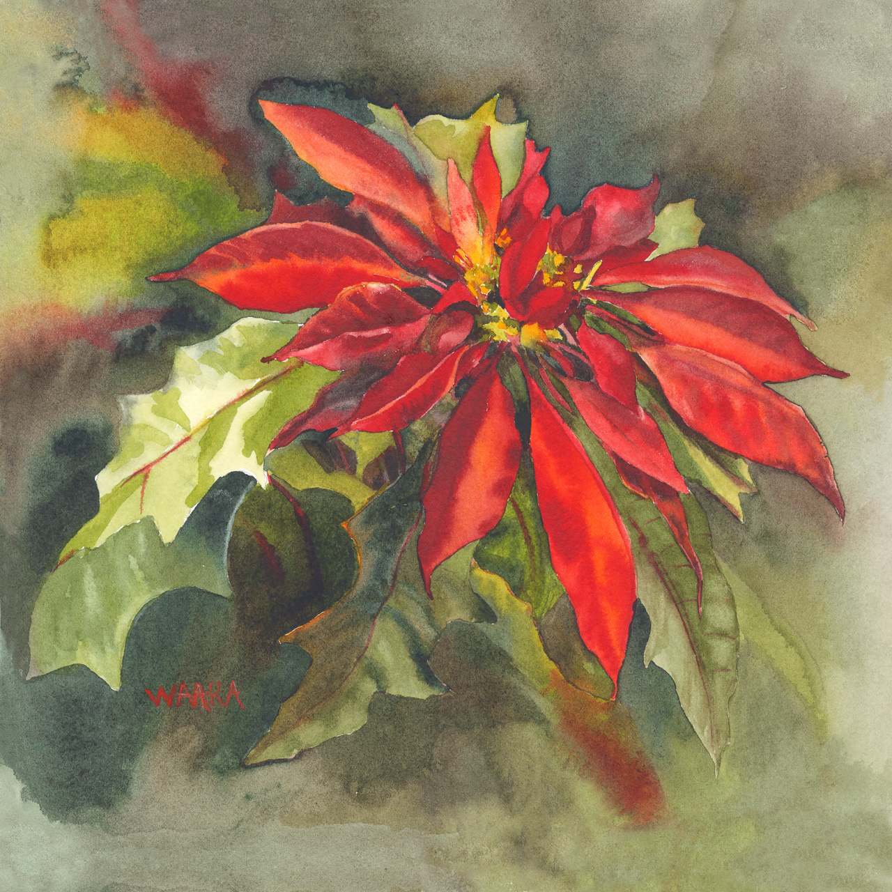 Watercolor painting of a poinsettia plant