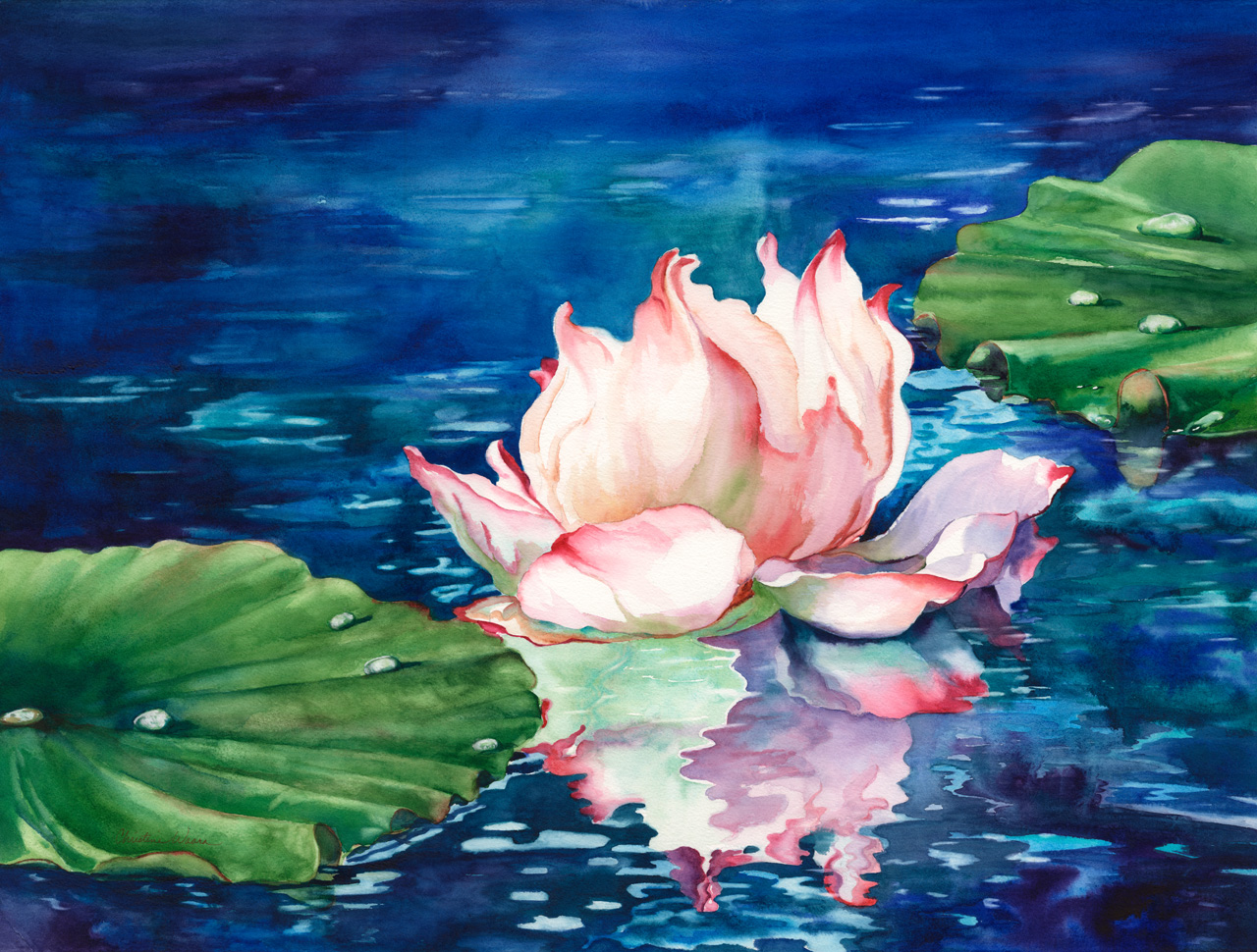 Watercolor painting of a waterlily among lily pads