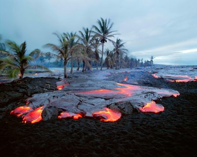 """Transition"" by Brad Lewis lava flowing through palm trees on Hawaii"