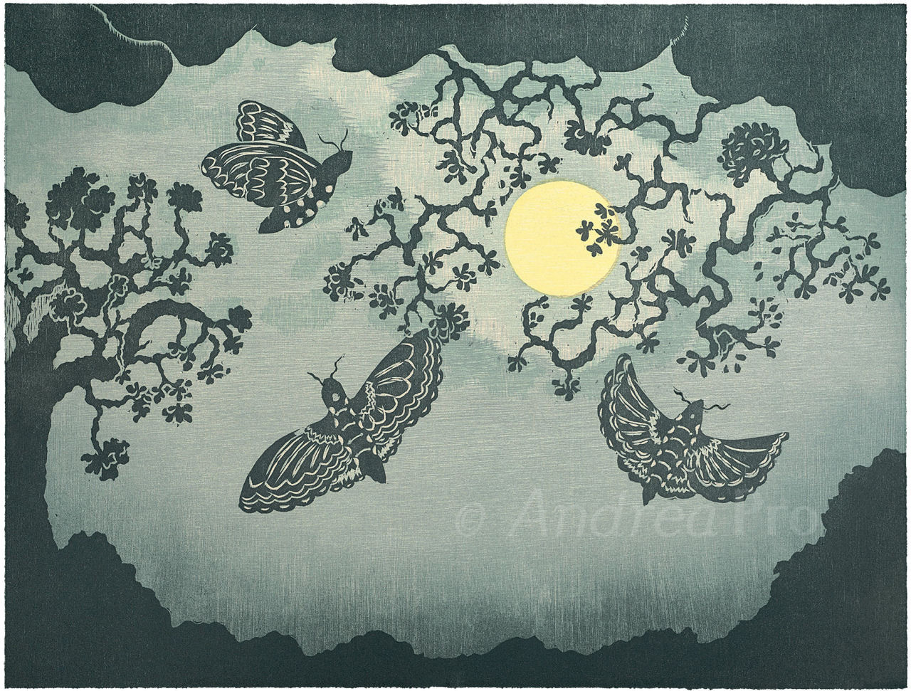 Circling The Moon by Andrea Pro print of moths and moon