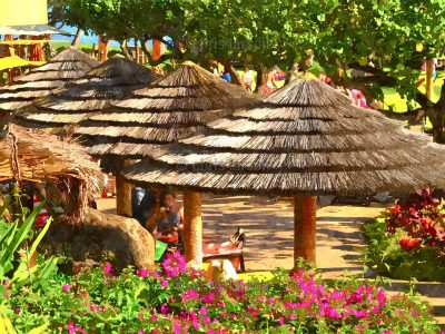 Palapa Paradise by Chris Larson