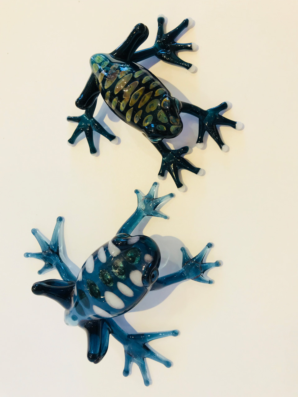Two blue Glass Frogs by Chris Upp