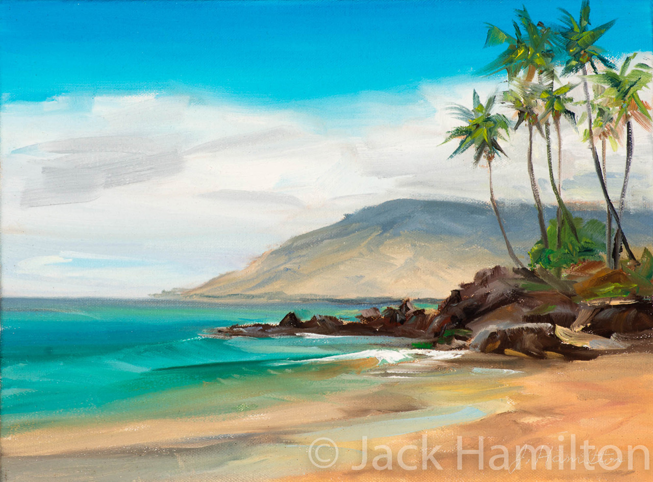 Gentle Wave At Kame'ole by Jack Hamilton oil in canvas