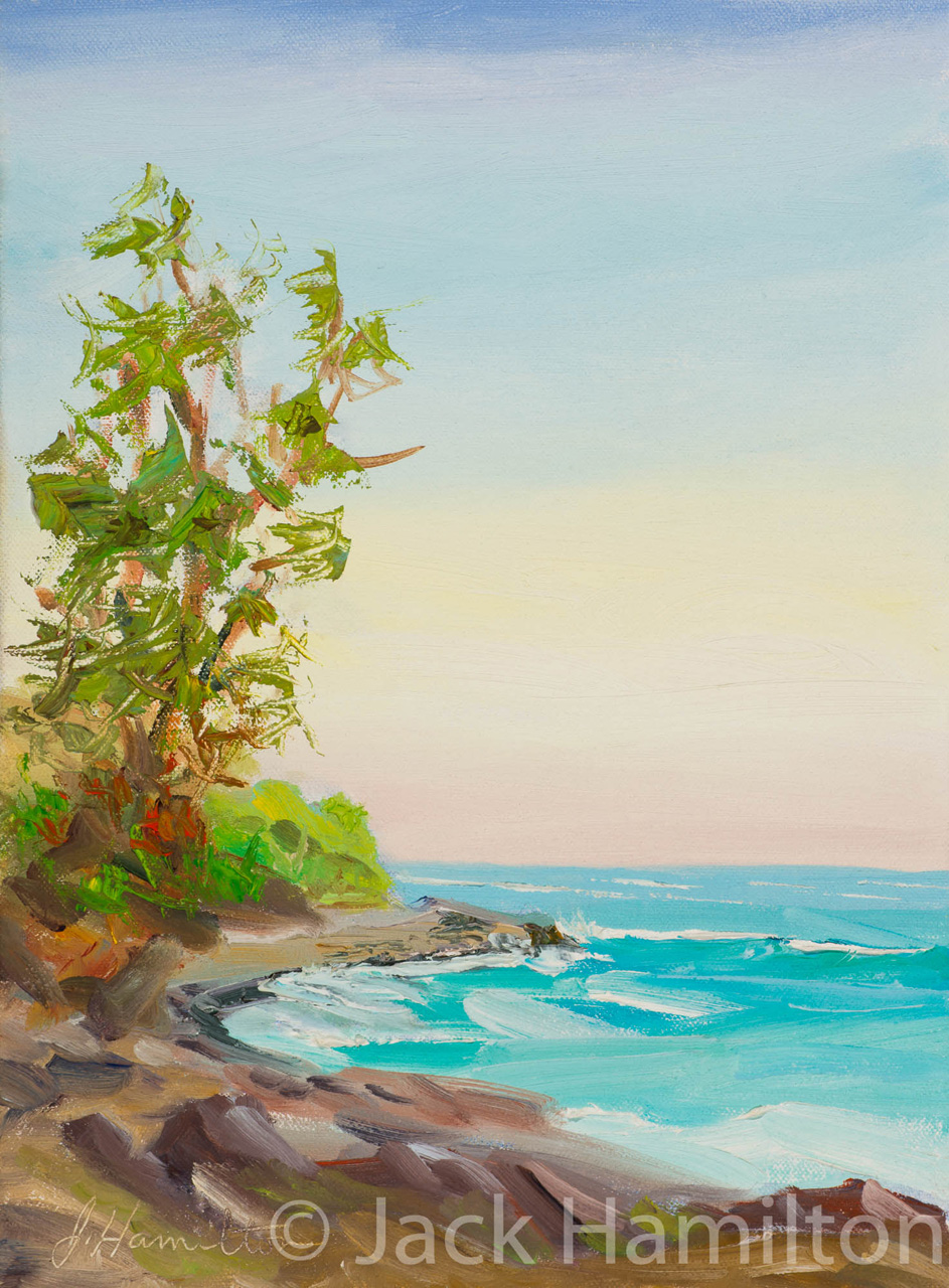 Waihe'e Coastal Dunes And Reserve by Jack Hamilton oil on canvas