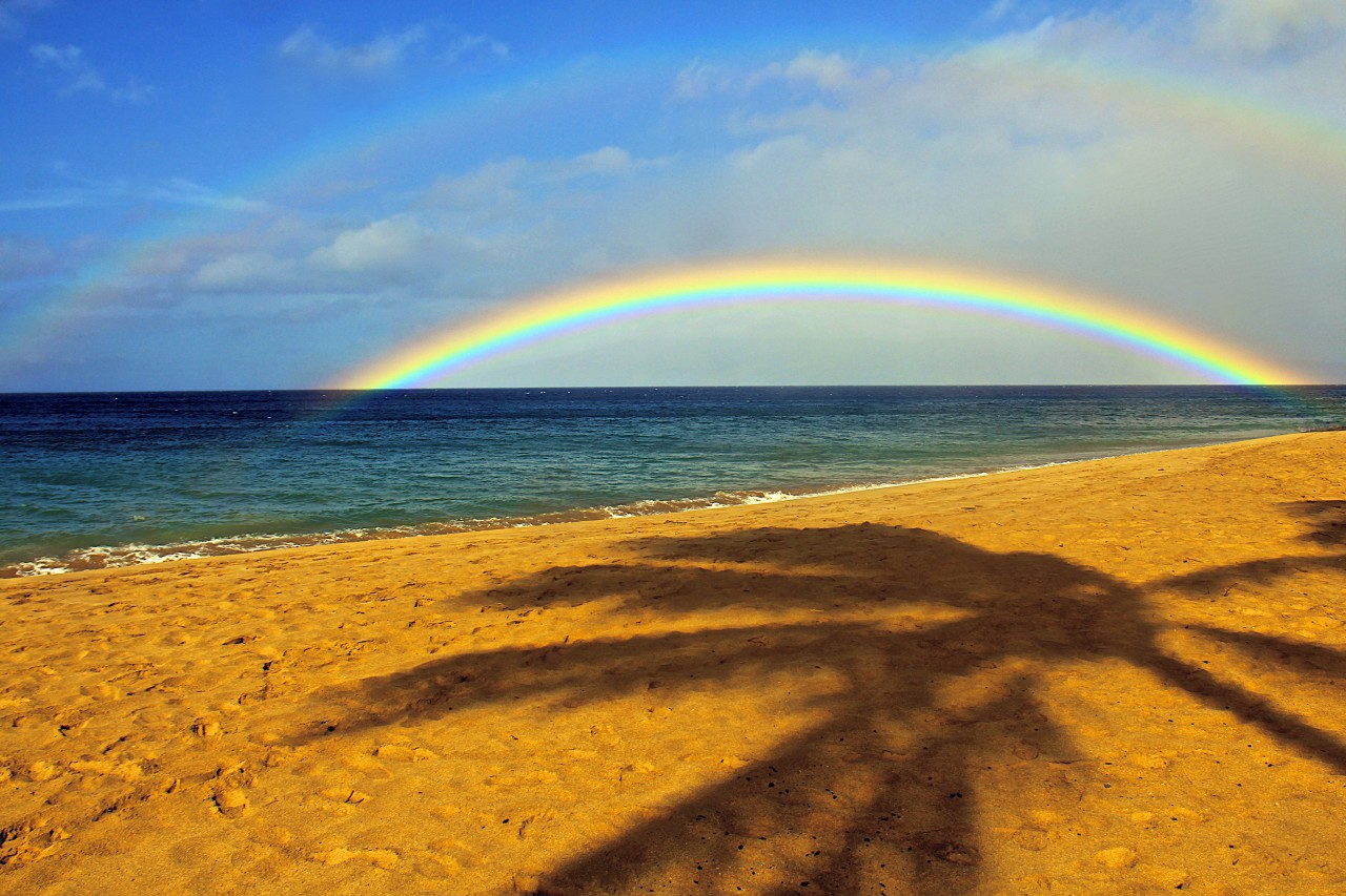 Sam's Place Kaʻanapali Beach rainbow over beach with palm shadow