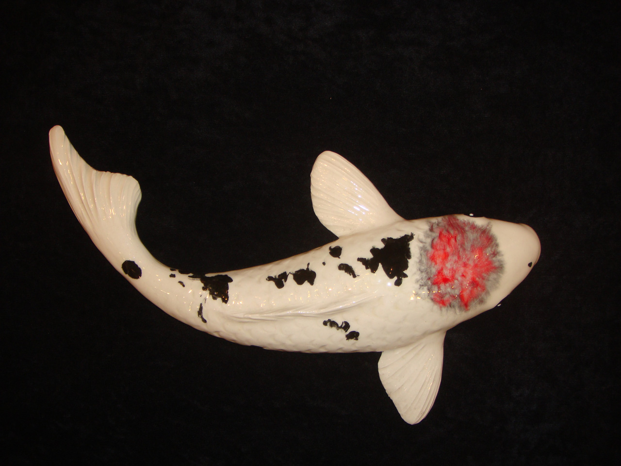Ceramic Koi by Mark MacKay with black and pink glaze