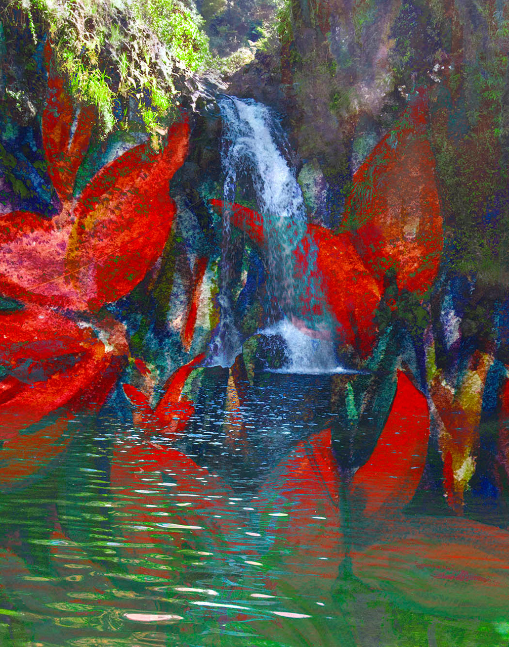 Letting Words Shed by Marisela Bracho with waterfall and flower images