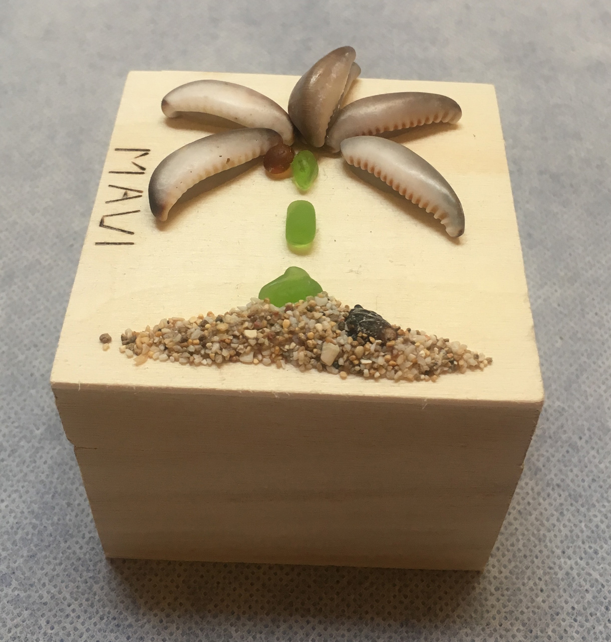 Beach Treasure Palm Square Box by Richard Jordan