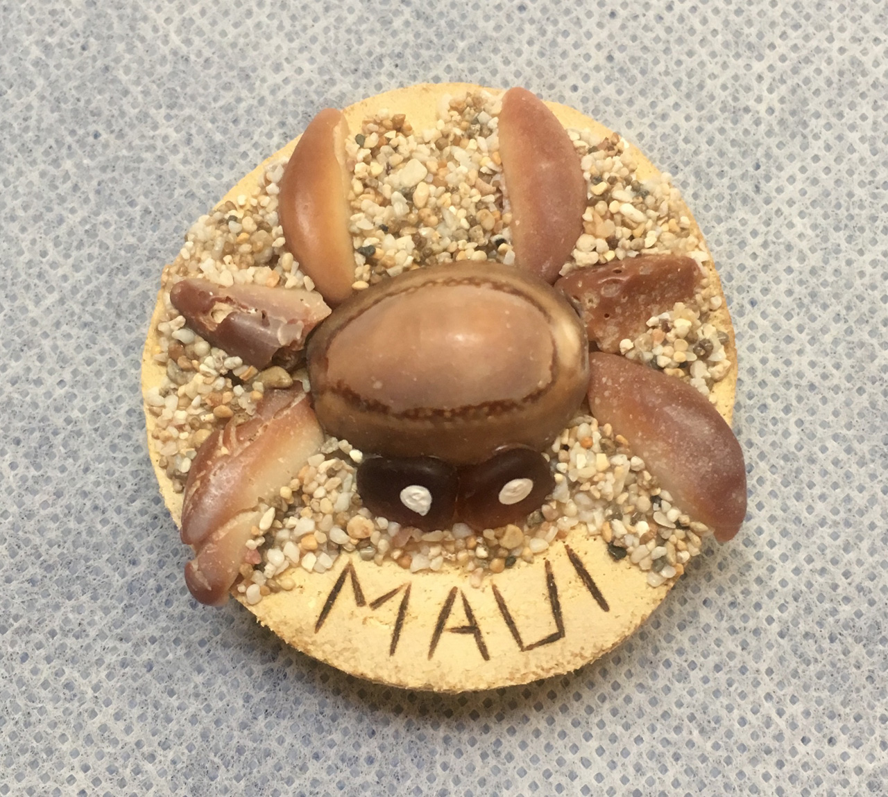 Beach Treasure Crab Magnet by Richard Jordan with maui written on it