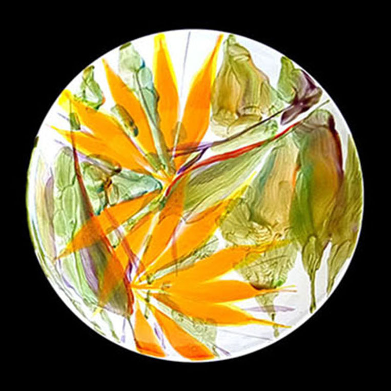 Salad Plate by Michael Lee bird of paradise design