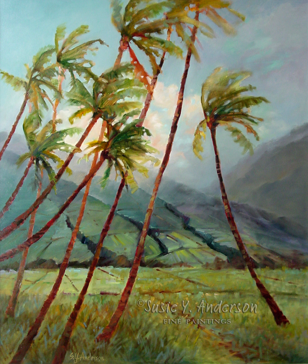 Sentinels of the Field by Susie Anderson palms with mountains in the background in Hawaii