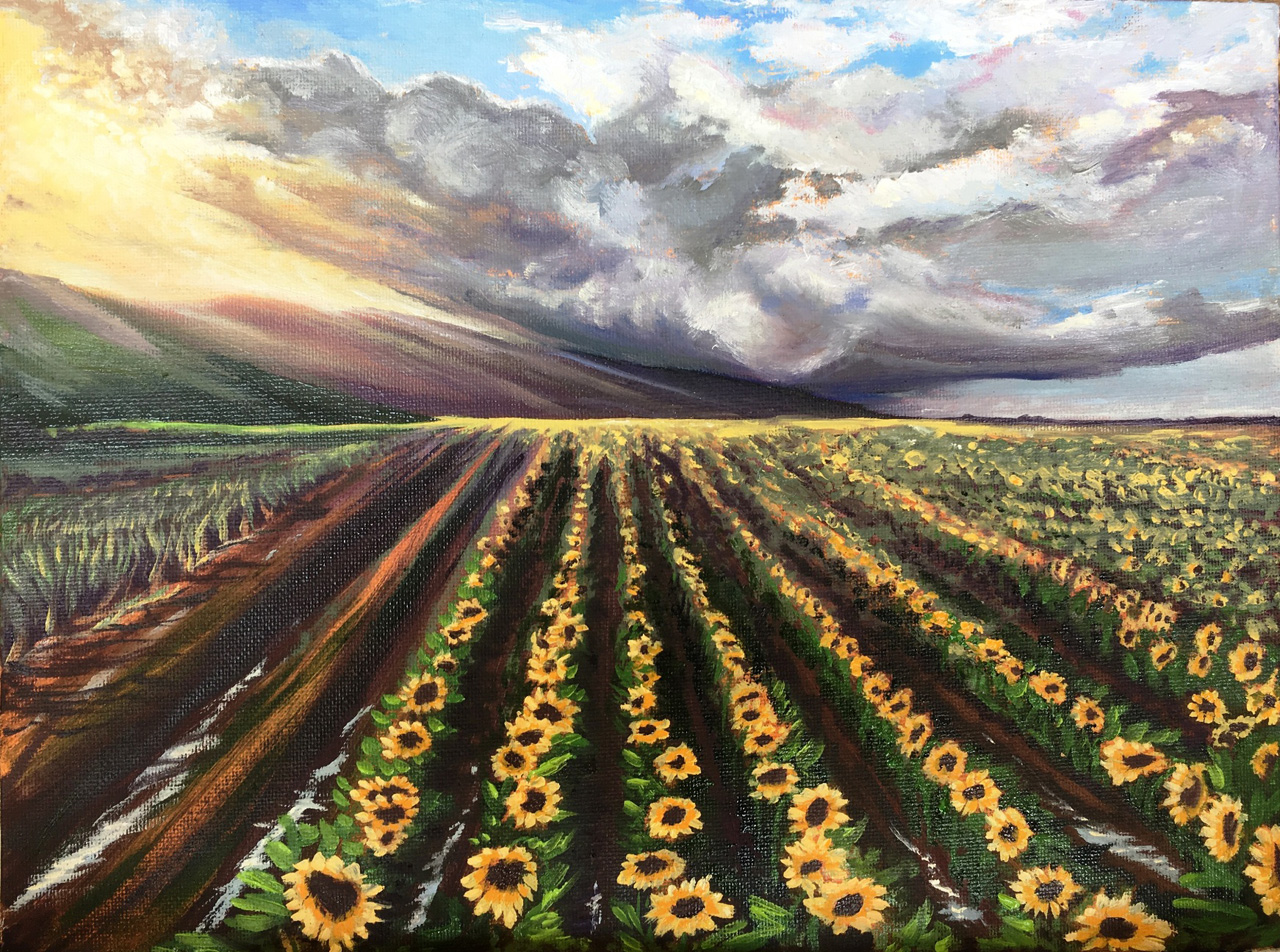 'Coming and Going- Cane to Sunflowers' 9 x 12 Oil on Canvas Panel Diane Appler