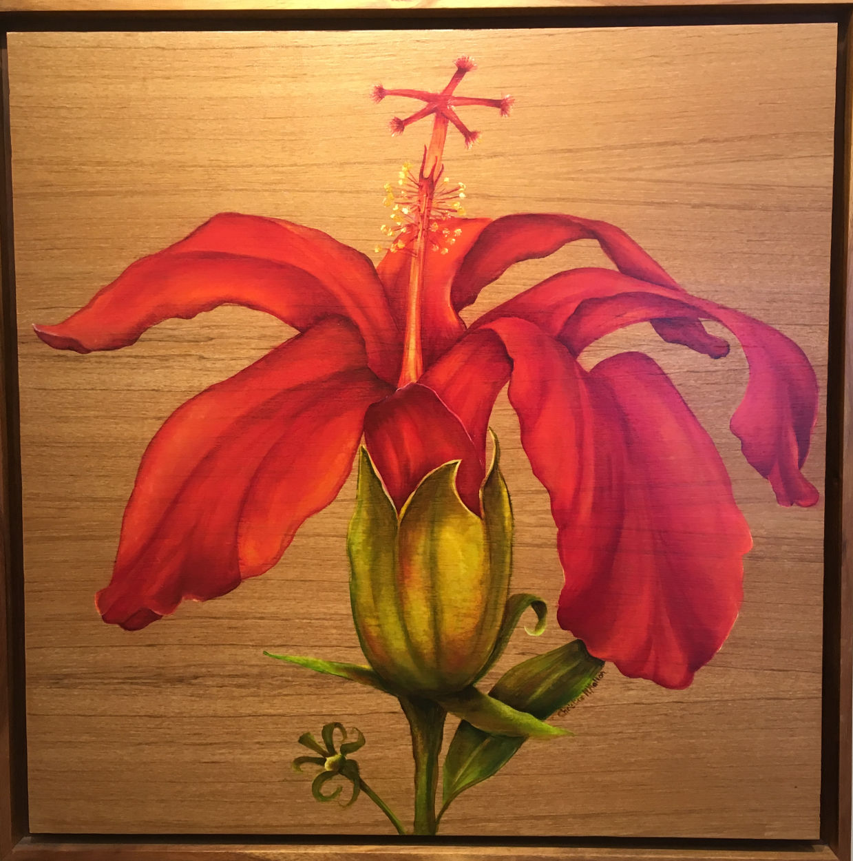 Red Hibiscus Oil Painting