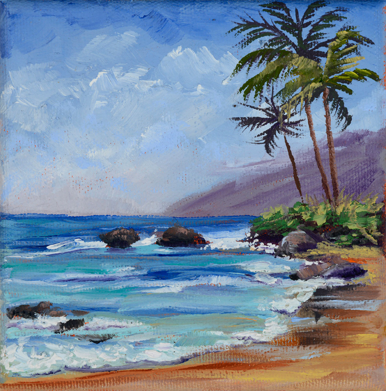 wailea polo beach 5x5 Oil on canvas Diane Snoey Appler