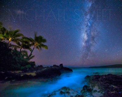 A purple night sky with the milky way visible over blue glowing waters and the shadow of palmtrees