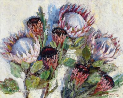 an original oil painting. Three King Protea flowers, and five Pink Mink Flowers against a white background.