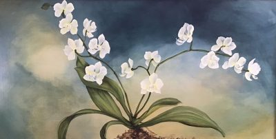 an original oil painting of a white orchid plant against a navy blue and sage green background