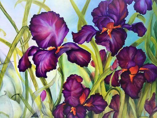 an up-close view of Dianʻs Black Iris by Christine Halton
