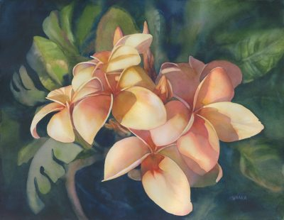an original watercolor painting of a plumeria bunch. Light pink, yellow, and shades of orange make up 5 plumeria flowers. Leaves of the plumeria tree are visable in the background. All against a deep blue background