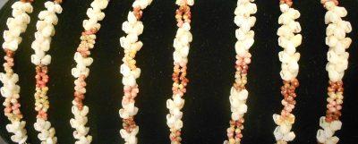Eight Kipona Bracelets