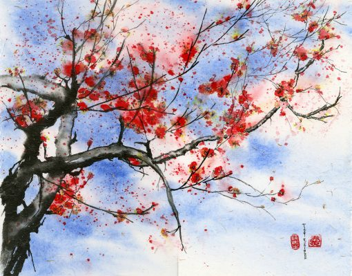 """""""Red Plum Blossom"""" by Vicky Robinson"""