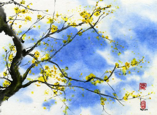 """Yellow Plum Blossom"" by Vicky Robinson"