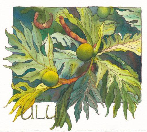"""""""'Ulu"""" by Christine Waara - CW152"""