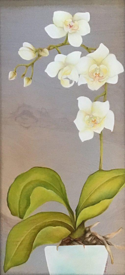 """White Orchid"" by Christine Halton - CH587"