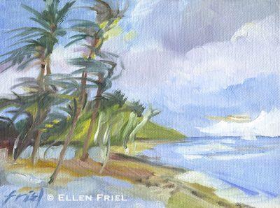 """""""Palm Breeze"""" by Ellen Friel"""