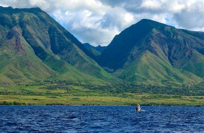 """West Maui Mountains Meet Baby whale"" by Sandra Greenberg"