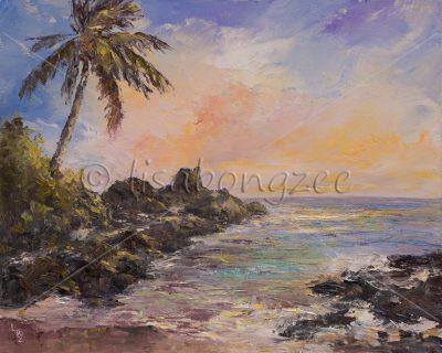 """""""Pa'ako Beach (Secret Cove) Maui"""" by Lisabongzee - LBZ272"""